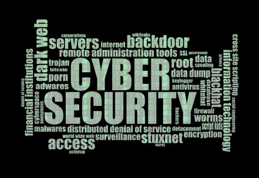 BSI startet Cyber-Sicherheitsumfrage